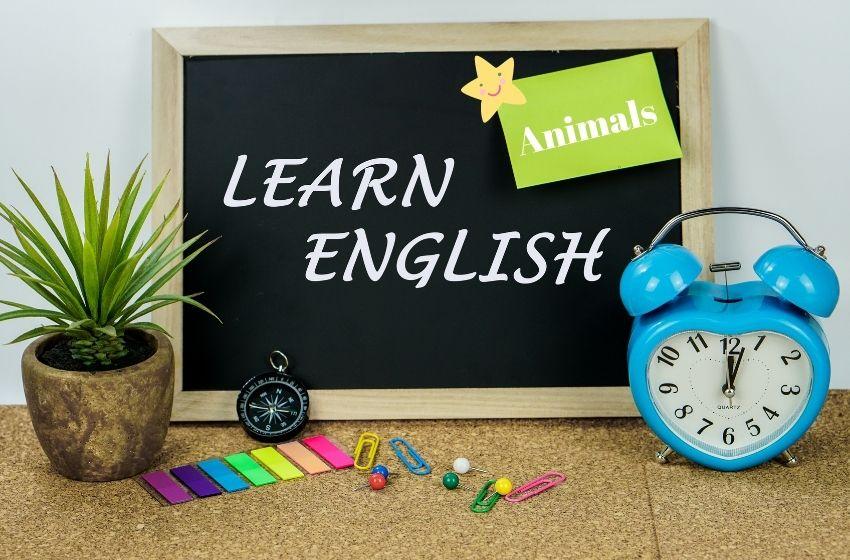 2.Sınıf İngilizce Animals Ünite Testi
