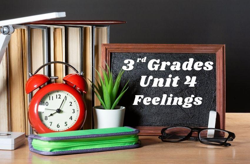 3.Sınıf İngilizce Feelings Ünite Testi