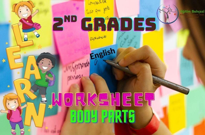 2.Sınıf İngilizce Body Parts Çalışma Kağıtları